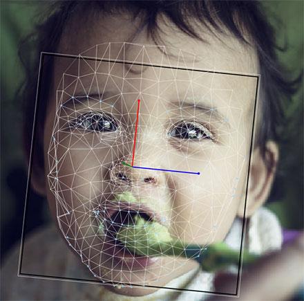 Baby FaceReader婴幼儿面部表情分析系统