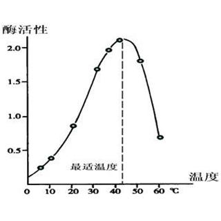 酶活性检测