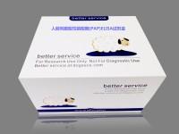 北京试剂人前列腺酸性磷酸酶(PAP)ELISA试剂盒