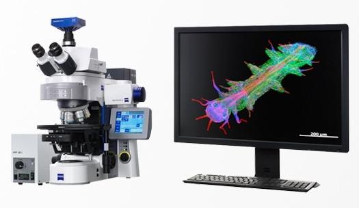 蔡司Axio Imager 2 研究级显微镜