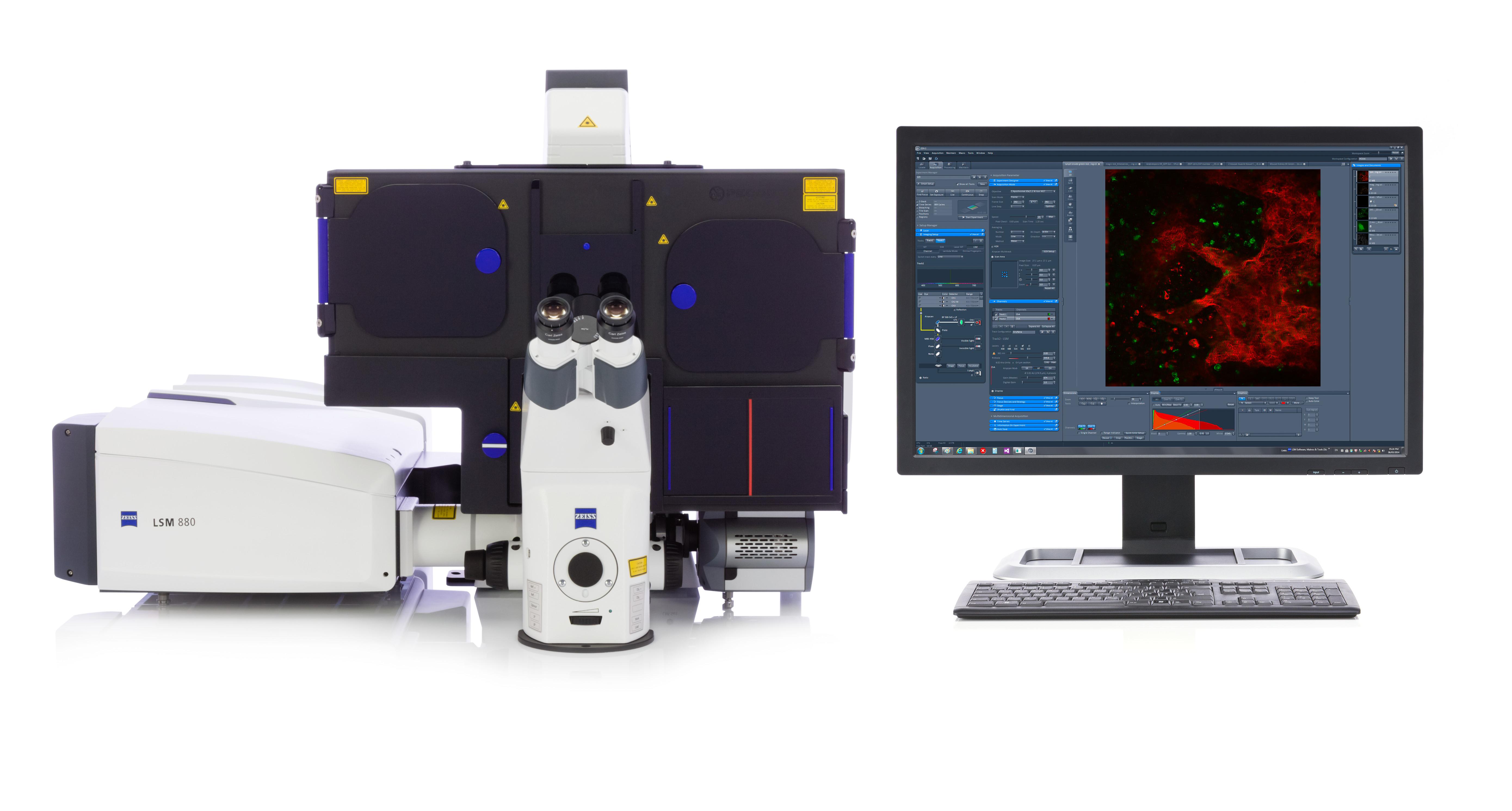 蔡司超高分辨率激光共聚焦显微镜