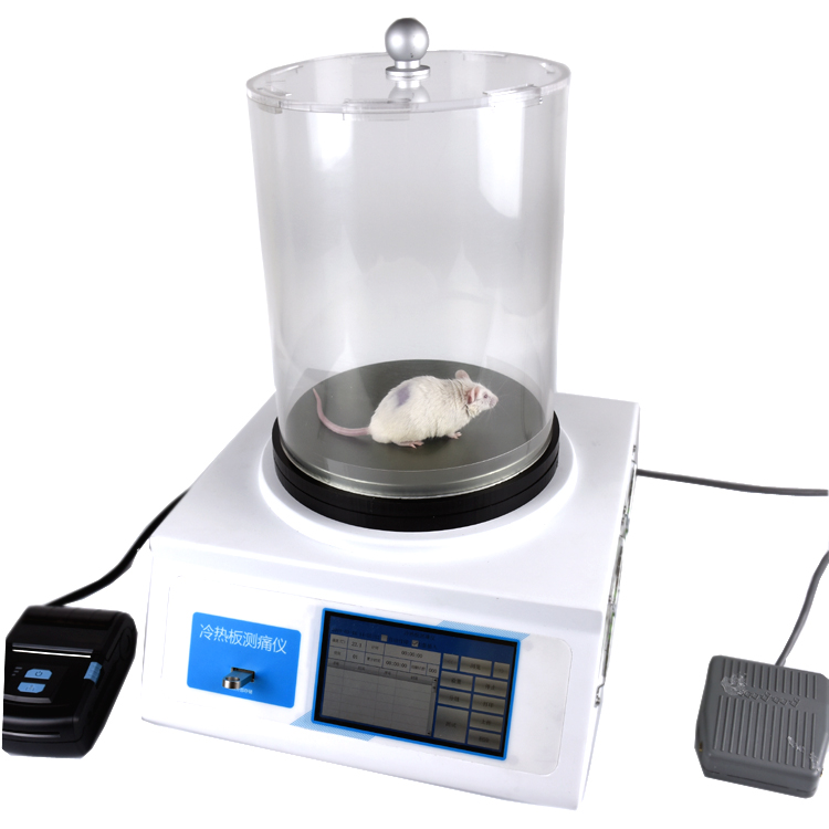 大小鼠智能热板测痛仪