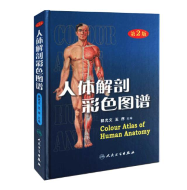 人体彩色解剖图谱.png