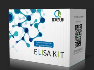 小鼠肾损伤分子1(Kim1) ELISA 试剂盒