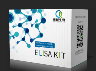 大鼠纤溶抑制因子(TAFI) ELISA 试剂盒