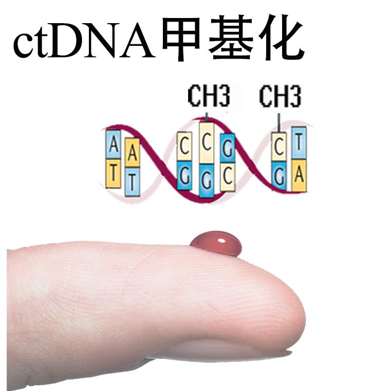 ctDNA甲基化测序