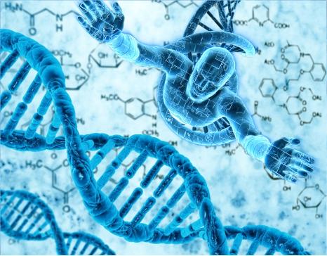 全基因组甲基化测序 Whole Genome Bisulfite Sequencing