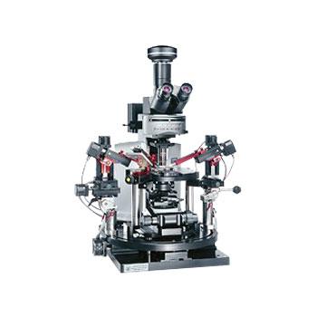 奥林巴斯 BX61WI/BX51WI 载物台固定式显微镜
