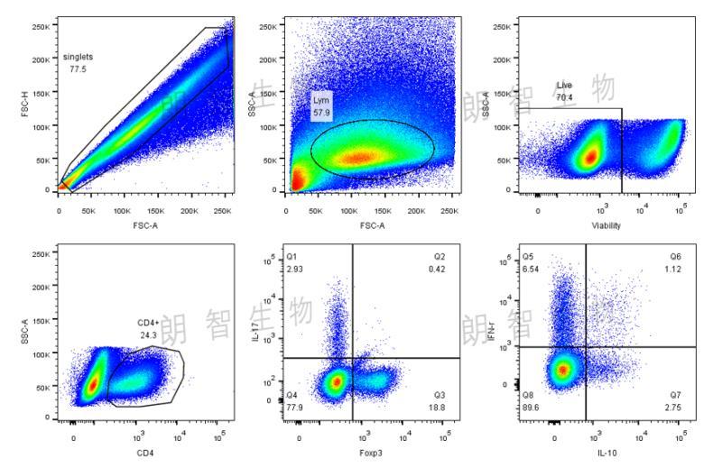 胞内细胞因子、核内转录因子检测(Th17、Treg等)