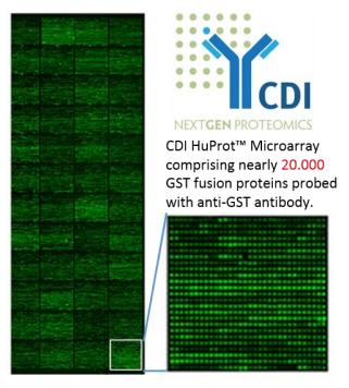 HuProtTM人类蛋白质组芯片新一代组学研究工具
