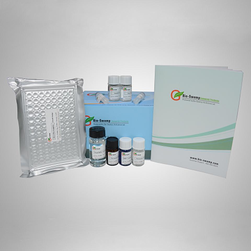 Bovine Secretory Immunoglobulin A (sIgA)ELISA Kit
