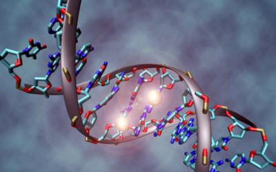 DNA甲基化测序数据(MeDIP-Seq)分析