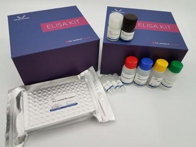 Mouse XRCC5 ELISA Kit/小鼠X-射线修复交叉互补蛋白5 ELISA Kit