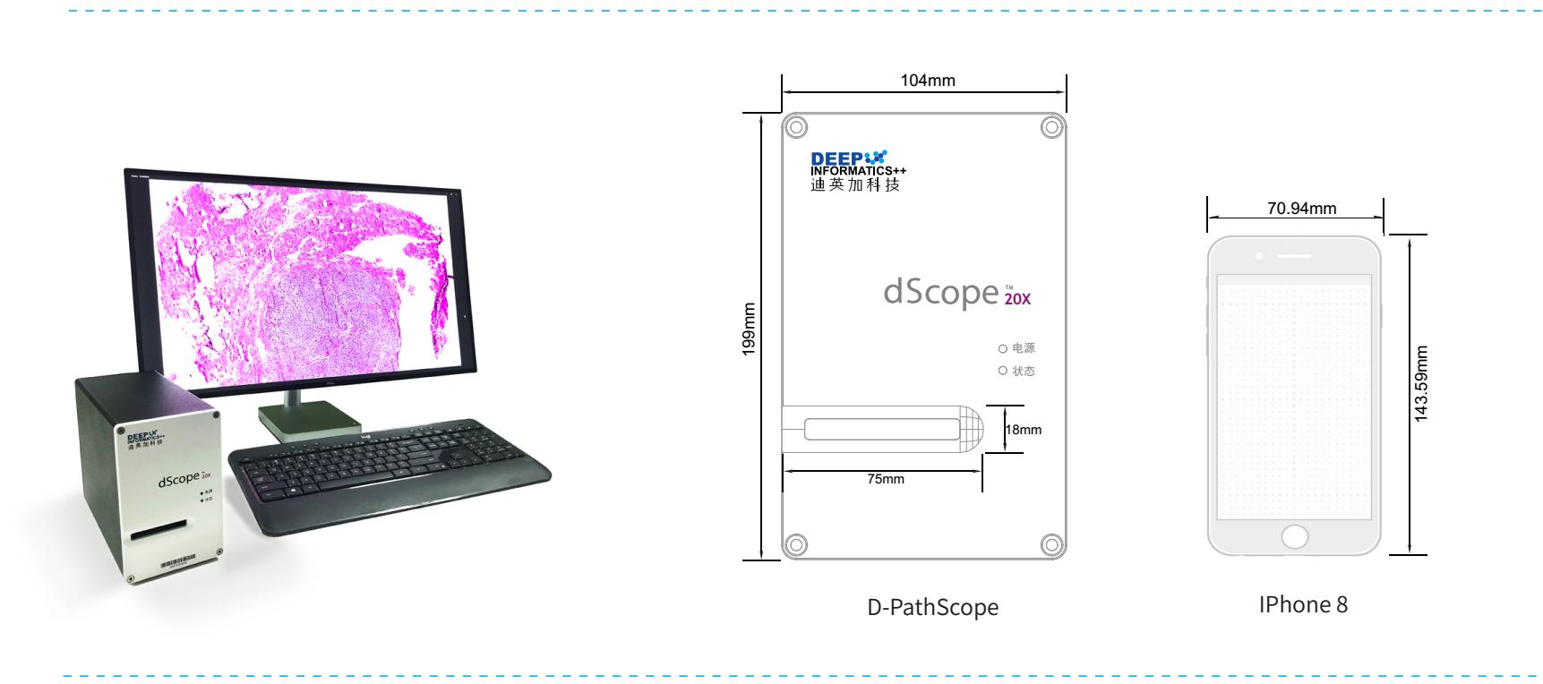 D-Scope 迪英加数字扫描仪系统