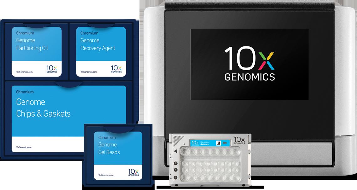 普迈精医 10x 单细胞转录组测序服务