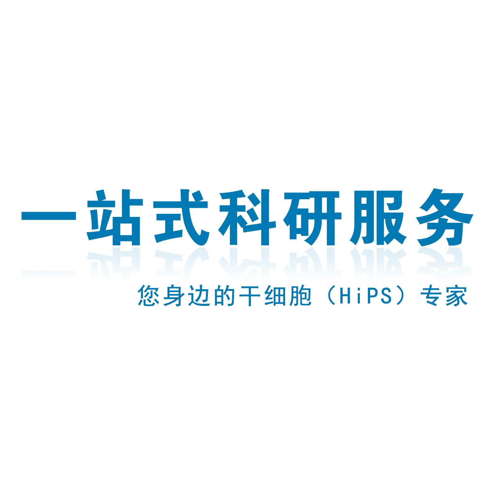 尿液细胞iPS重编程
