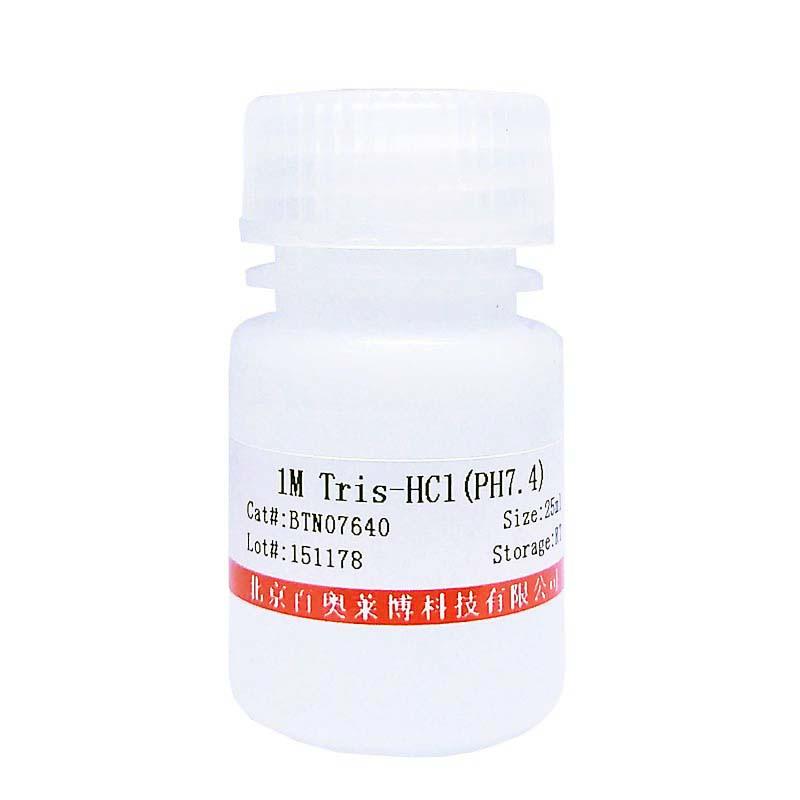 精氨酸甲基转移酶1北京现货