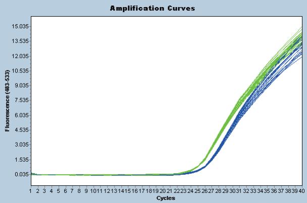 qPCR 实验完美曲线