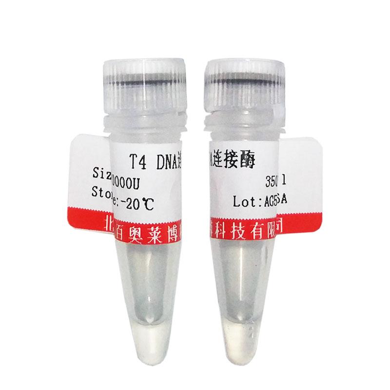 SDS-PAGE蛋白质低分子量标准(14400~97400,液体,即用型,6条带)