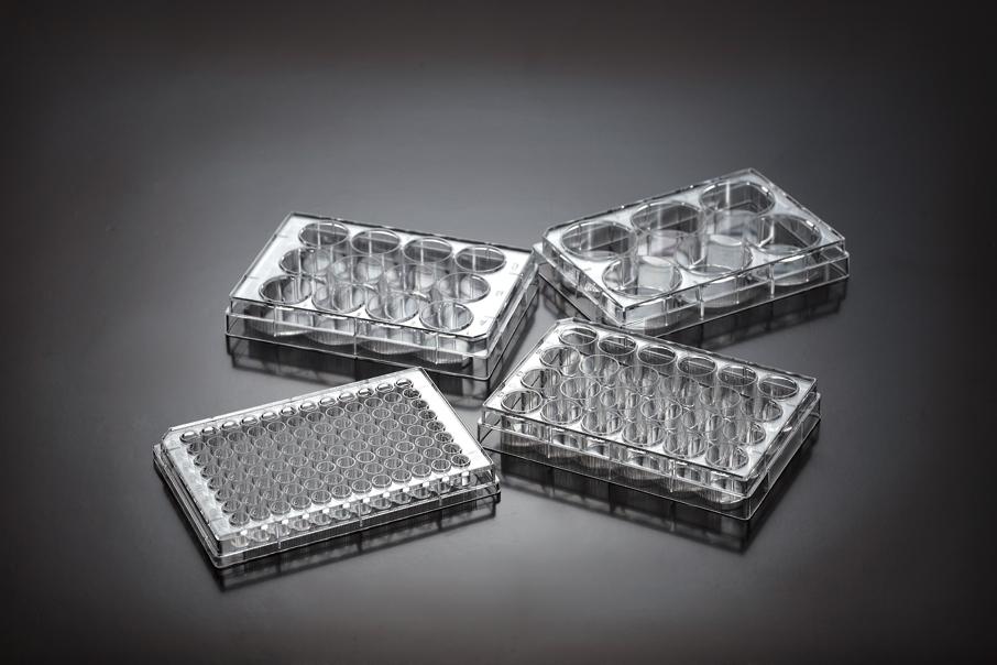 一次性细胞培养板