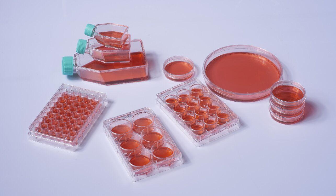 细胞培养系列(板/瓶/皿)