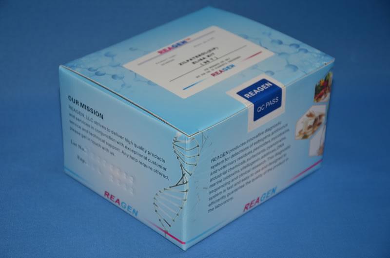 兔补体因子B(CFB)ELISA试剂盒