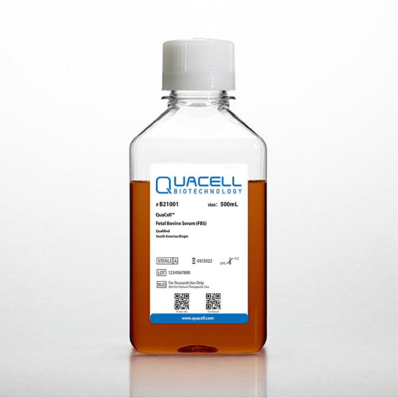 QuaCell™CHO CD02培养基,悬浮,化学成分限定