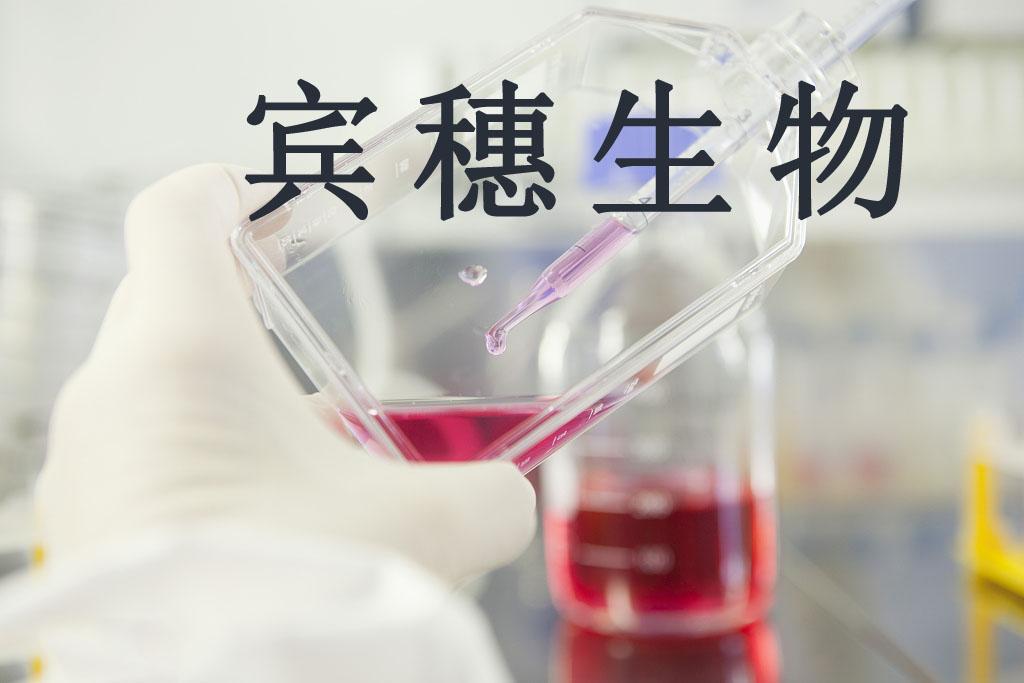 RMG-I细胞<人卵巢癌细胞>