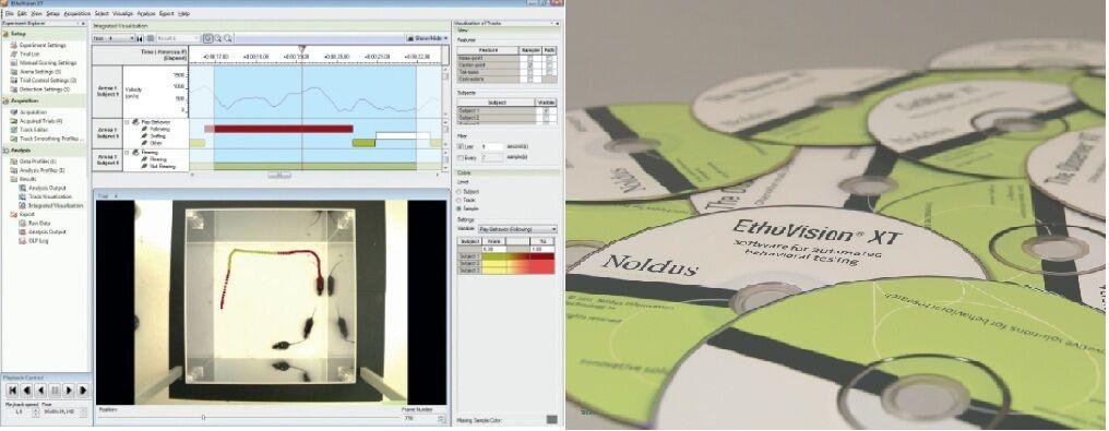 动物行为视频分析系统