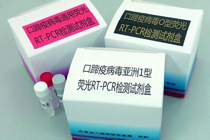 甘露糖含量测试盒100T图片