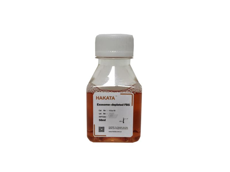 HAKATA ® 无外泌体血清H-Exo-50 供应