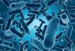 大肠埃希菌肺部感染,为何总是耐药?