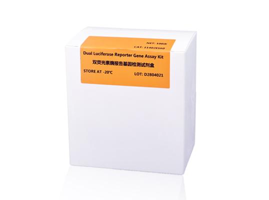 Dual Luciferase Reporter Gene Assay Kit 双荧光素酶报告基因检测试剂盒