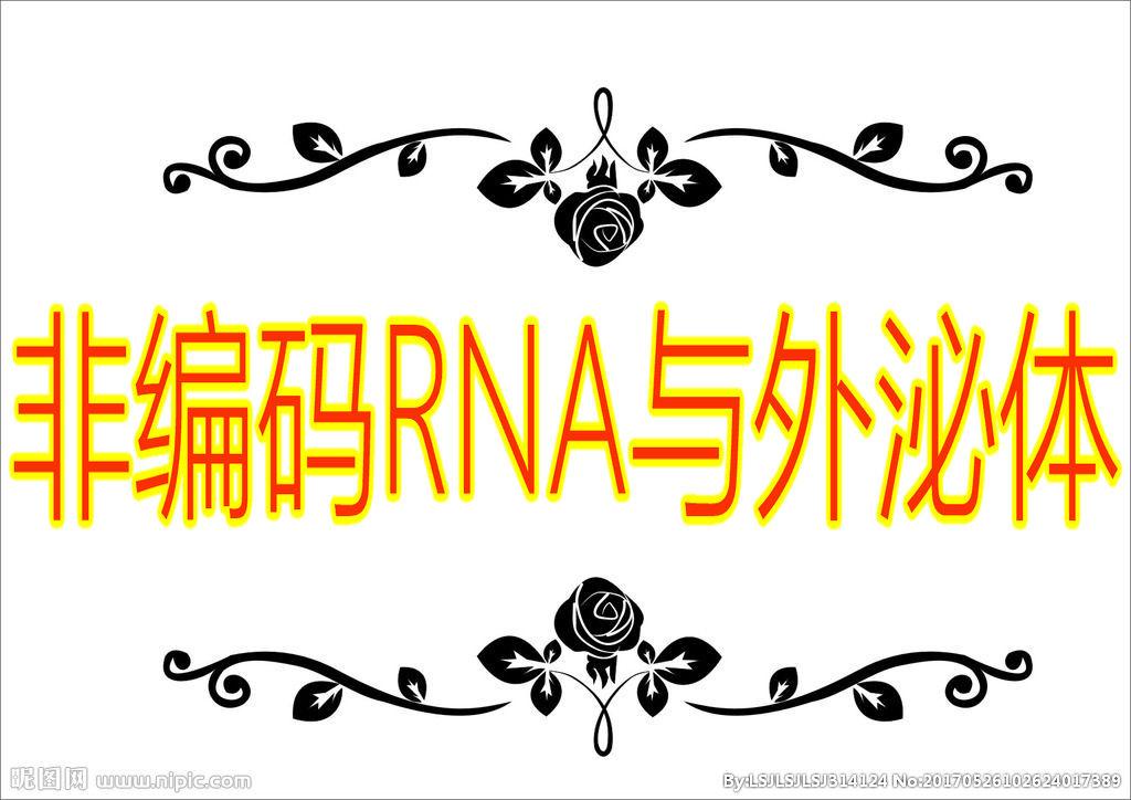 「医药加」非编码RNA与外泌体研究策略及国自然相关班