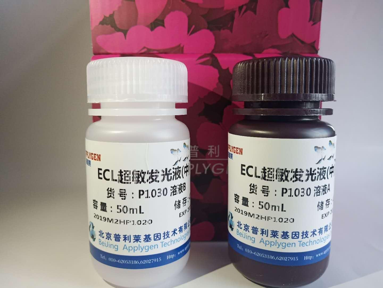 Super ECL 超敏发光液(中) P1030