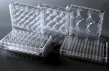 耐思24孔细胞小室, 8um孔径PC(聚碳酸酯)膜, 带盖,  TC