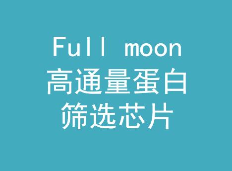 Full moon蛋白芯片-伯豪生物
