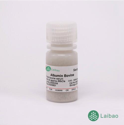 Albumin bovine serum 牛血清白蛋白(全组分)