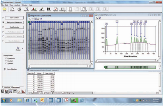 ENDURO TOTAL LAB凝胶成像系统软件