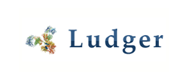 LudgerClean 纯化板(糖苷内切酶和糖苷外切酶处理后使用)