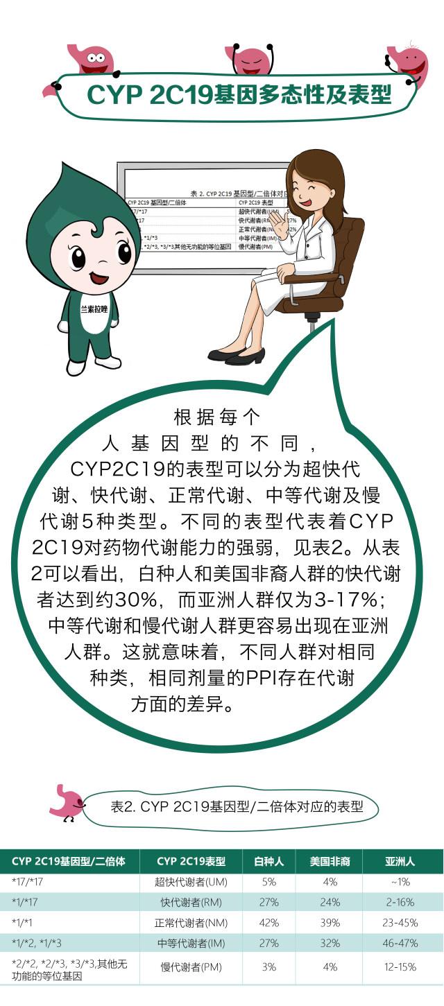 丁香园超声_质子泵抑制剂:从 CYP2C19 遗传药理学到精准医疗 - 丁香园