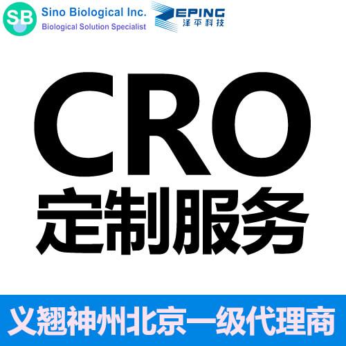 CRO技术服务