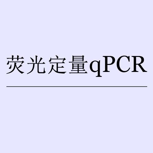 熒光定量qPCR