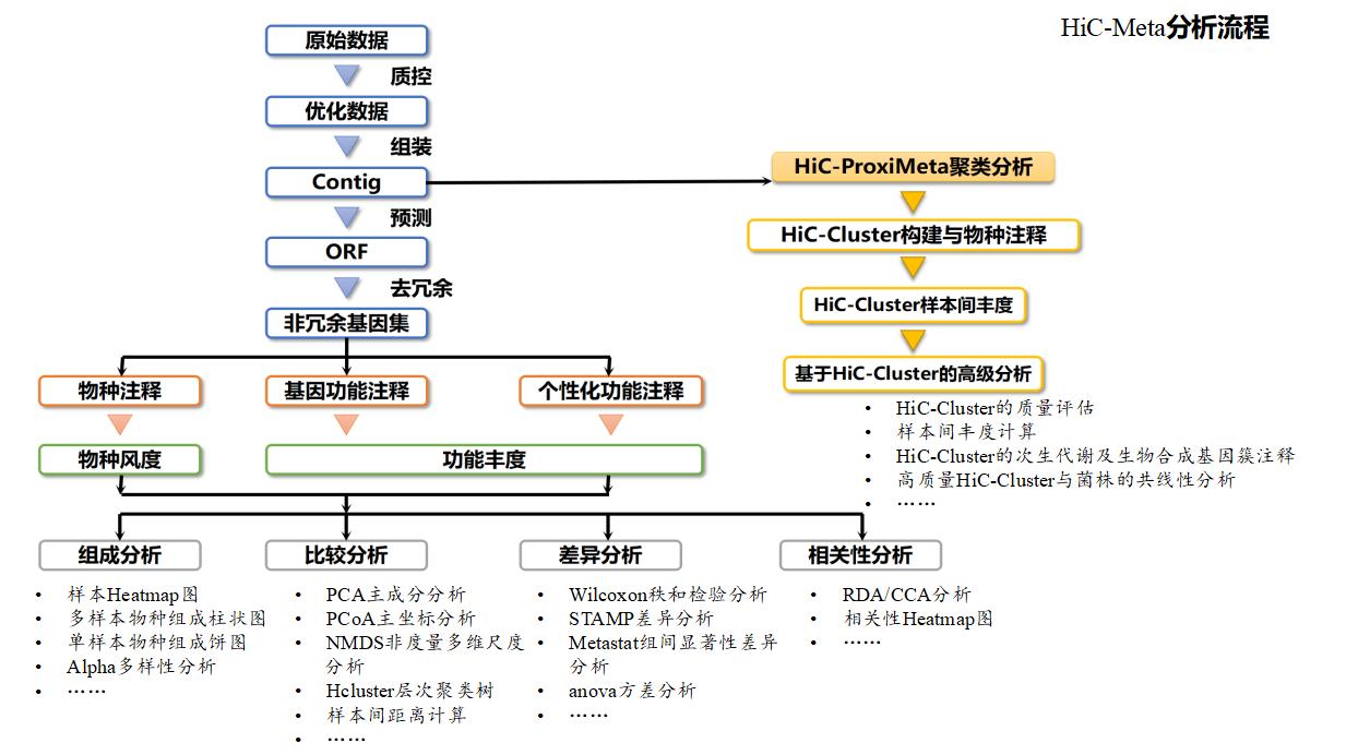 HiC-Meta測序
