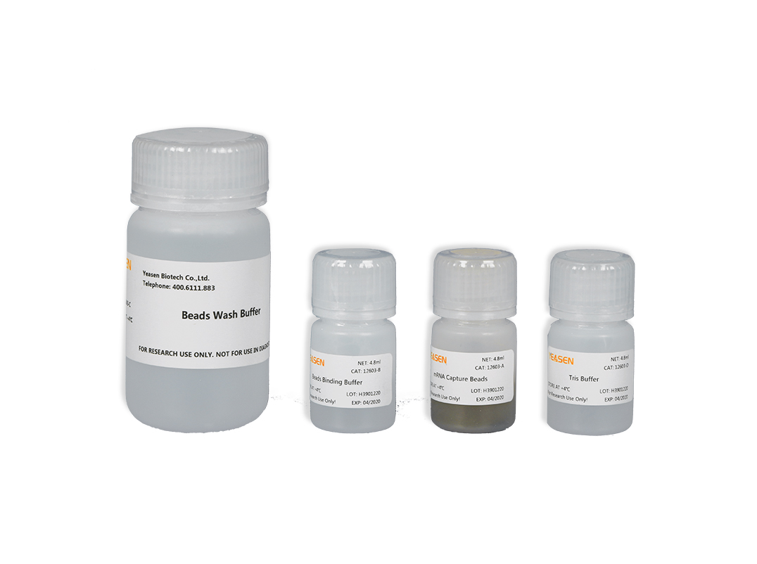 Hieff NGSTM mRNA Isolation Master Kit mRNA纯化试剂盒