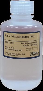 RIPA细胞裂解液-Visual Protein