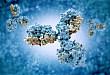 降钙素原在急诊抗感染治疗中的应用
