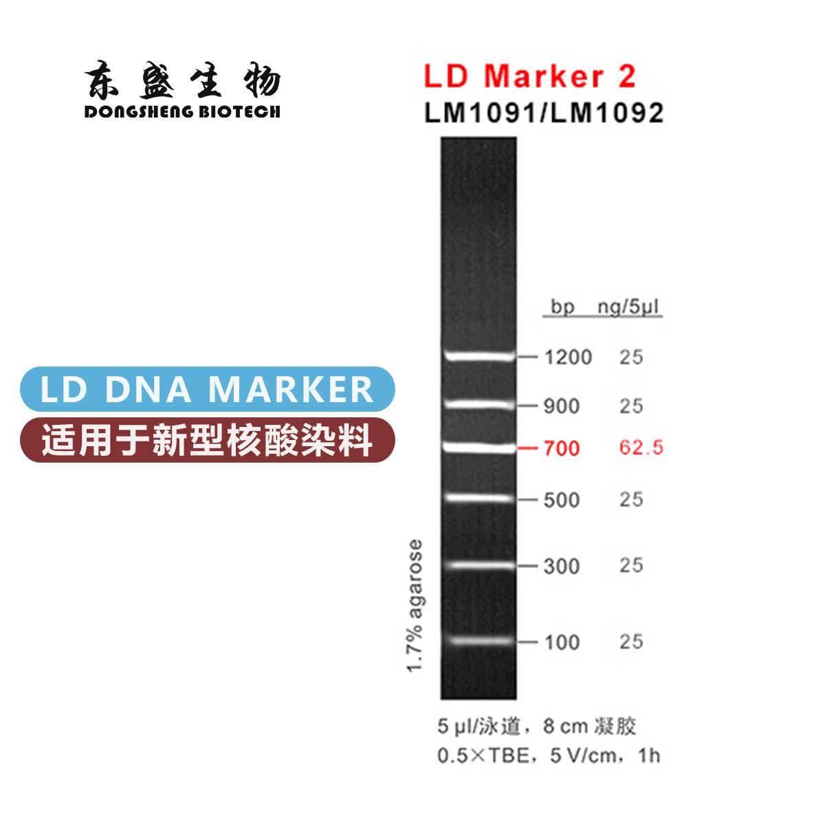 东盛LD Marker 2 新型染料专用DNA Marker (LM1091-LM1092)