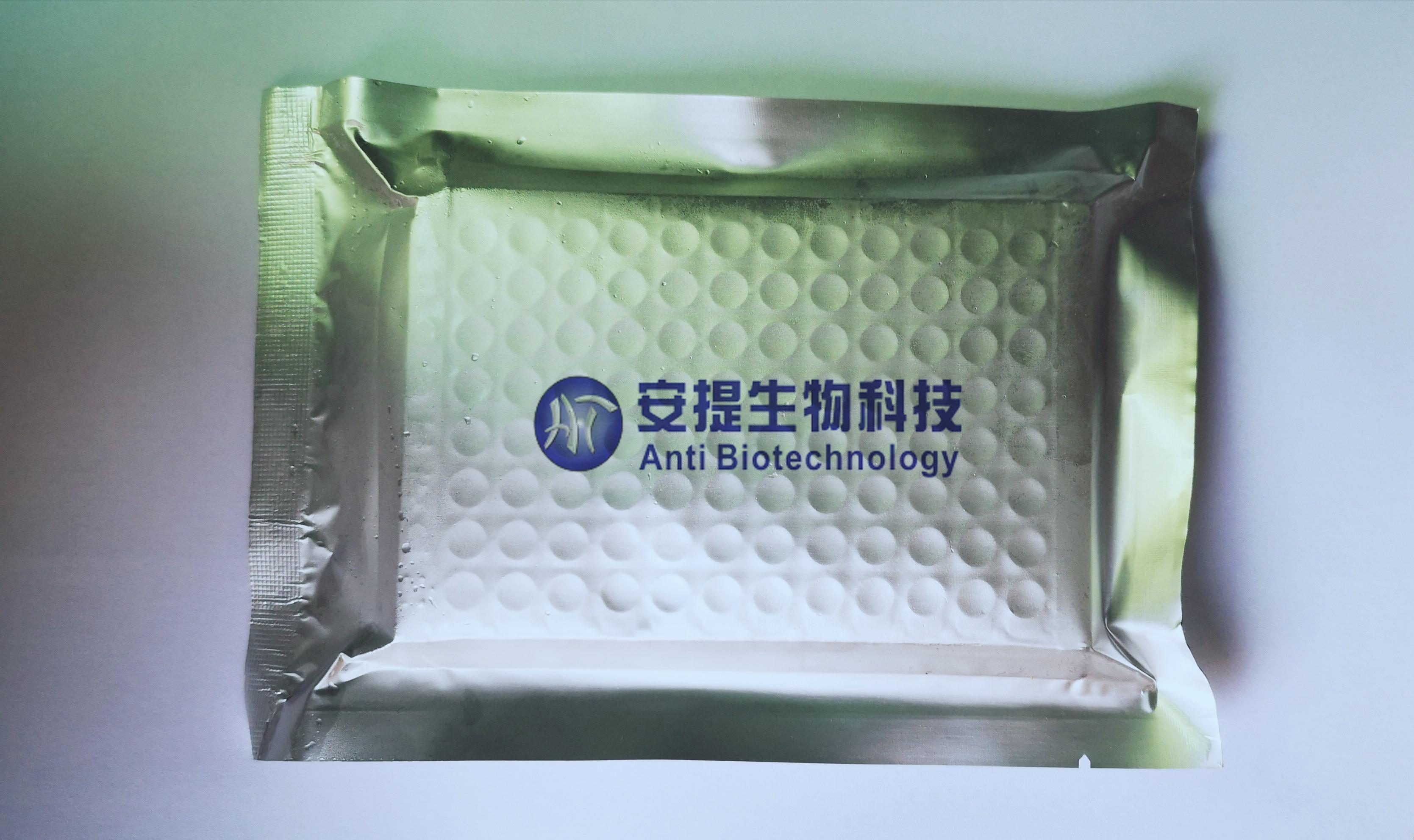 酶标板 96孔双面板