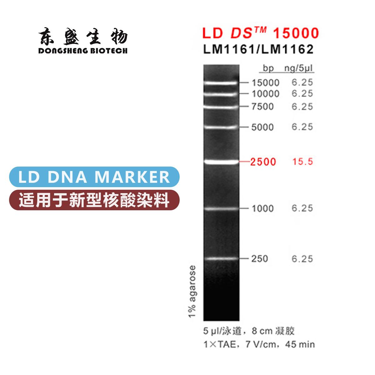 东盛LD DS15000 新型染料专用DNA Marker (LM1161-LM1162)